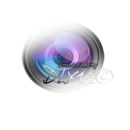 objectif Dlx12(2)