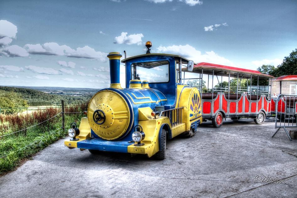 Train(M)